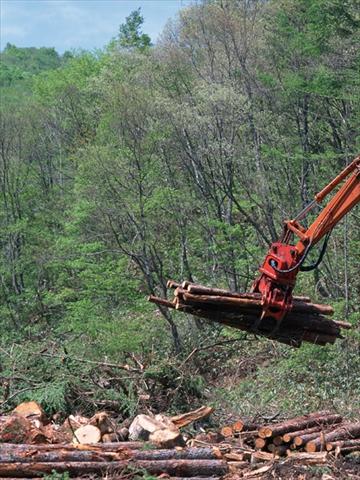 森林破壊1 -沖縄太陽光発電所のメガソーラーファーム1「登川発電所」-